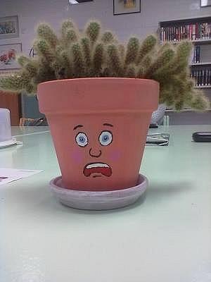 Säikähtänyt kaktus